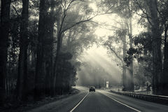 Car travelling on road with sun rays shining through. Black and white car travelling on road with sun rays shining through stock images