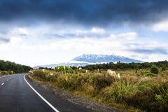 Scenic view of Tongariro national park in New Zealand stock image