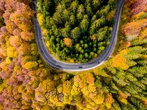 Road trip trough the woods in the middle of the autumn. Aerial view Royalty Free Stock Photos