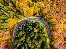 Road trip trough the woods in the middle of the autumn. Aerial view Royalty Free Stock Photography