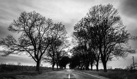 Road trip Royalty Free Stock Images