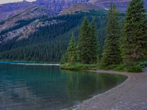 Pine Trees and a Clear Lake. Road tripping through the Canadian Rockies, walked through the forest to get to this scene. Taken in Alberta, Canada Royalty Free Stock Images
