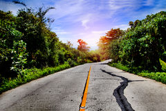 Road trips. Sunset and travel concept. Perspective asphalt road. Road and highway Stock Image