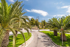 Road in tropical garden Royalty Free Stock Photos