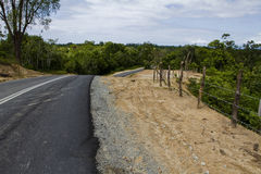 Road through tropical jungle Stock Image