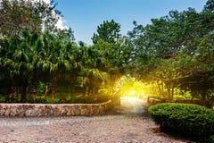 Road in tropical park. Ancient village Altos de Stock Photo