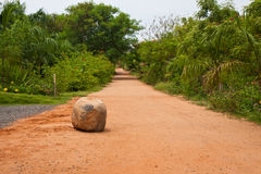 Road in a Tropical Resort. Dirt road in a tropical resort in India Royalty Free Stock Photos