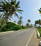 Road in the tropics Royalty Free Stock Photo