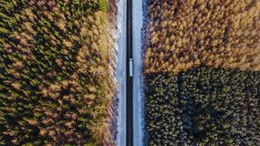 Road, truck, forest stock image