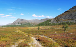 Road in tundra. Photo. Tundra. Blue sky. Mountains. Different colors in the tundra Royalty Free Stock Images
