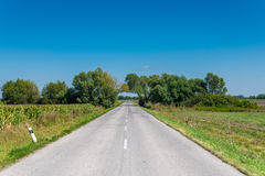 Road tunnel across bocage between fields Royalty Free Stock Photos