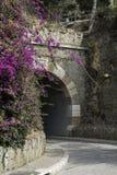 Road tunnel  through the mountain Royalty Free Stock Photos