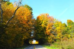 The Road Tunnels Through Fall Trees. A beautiful 'Indian Summer' fall day in Michigan reveals a country road tunneling through a thick group of fall colored royalty free stock photos