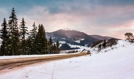 Road turnaround near the forest in snowy mountains. Lovely transportation winter scenery in Carpathian mountains Royalty Free Stock Photo