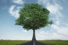 The road turns into a tree. Ecology concept Royalty Free Stock Photo