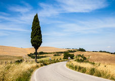 Road in Tuscany Royalty Free Stock Image