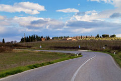 Road in Tuscany Stock Images