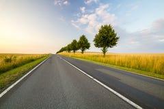 Road in Tuscany Stock Photo