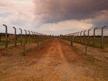 Road between two fences Royalty Free Stock Photo