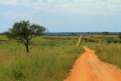 Road Through Ugandan Park. A dirt road through Murchison Falls National Park, Uganda, over looking a green valley stock photos
