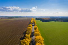 Fall landscape. Road under blue clear sky. Transportation background. Travel background. Sunny autumn aerial view. Fall nature. Clear horizon royalty free stock photos