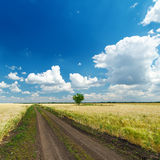 Road under cloudy sky Stock Image