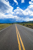 Road under cloudy sky, Yellowstone. A straight road with mountains royalty free stock photos