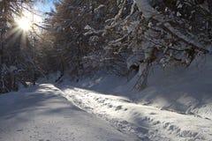 Road under snow stock photo