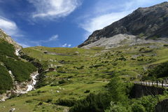 Road up from Bormio to Passo Stelvio Stock Photography
