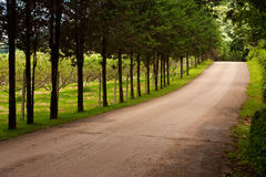 Road in upcountry Royalty Free Stock Photography