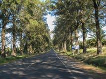 Road in Uruguay Stock Image