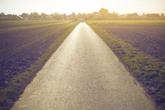 Road on vanishing point at sunset in Germany Royalty Free Stock Photo