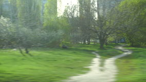 Road view of green fields and trees stock footage