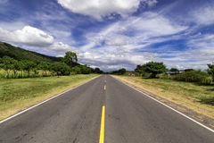 Road view Stock Photography
