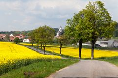 Road with village , lime trees and rapeseed field Royalty Free Stock Photos