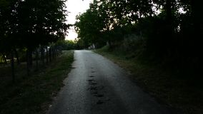 Road in the village during the sunset stock footage