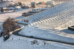 Road among vineyard covered with snow. Stock Images