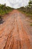 Road in vineyard, Thailand Stock Photos