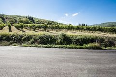 Road between Vineyards. Tuscany landscape with asphalt road and vineyards. Road between vineyards in Italy Stock Images