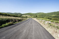 Road between Vineyards. Tuscany landscape with asphalt road and vineyards. Road between vineyards in Italy Stock Photos