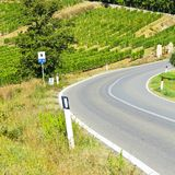 Road between Vineyards. Tuscany landscape with asphalt road and vineyards. Road between vineyards in Italy Stock Image
