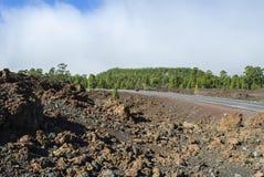 Road through Volcanic Landscape. Road through Teide Nationalpark - bright daylight Stock Photos