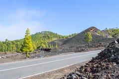 Road through Volcanic Landscape. Road through Teide Nationalpark - bright daylight Royalty Free Stock Photos