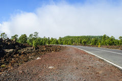 Road through Volcanic Landscape. Road through Teide Nationalpark - foggy day Royalty Free Stock Image