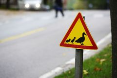 Road sign, ducks passing the road Stock Photo