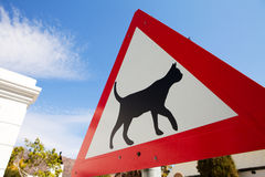 Road warning sign indicating cats are crossing Royalty Free Stock Images