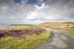 Road on Waternish, Skye, Scotland Royalty Free Stock Images