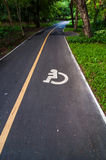 Road way cyclists and wheelchair in the garden. Royalty Free Stock Photo