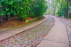 The road way to the Memorial Hall garden of Dr.Sun Yat-sen. Memorial Hall of former president Dr.Sun Yat-sen is on purple mountain near Nanjing City Stock Image