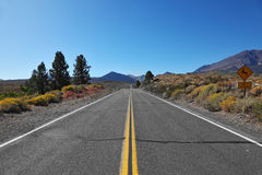 The road went off. Great American road Royalty Free Stock Photos